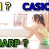 SII? Sharp? Casio? ビジネス・英語用電子辞書の選び方 【徹底比較】 (2)